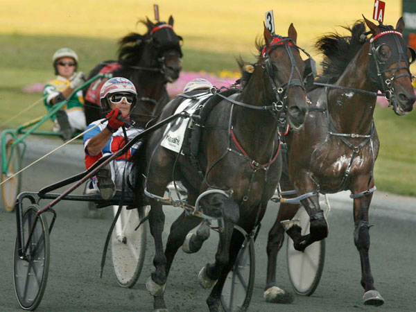 A harness-racing driver, not pictured, suffered what lawyers claim is traumatic and irrevocable brain damage in a high-speed crash at Harrah´s Philadelphia Race Track, pictured, on Nov. 17, 2013. (Charles Fox / Staff Photographer)