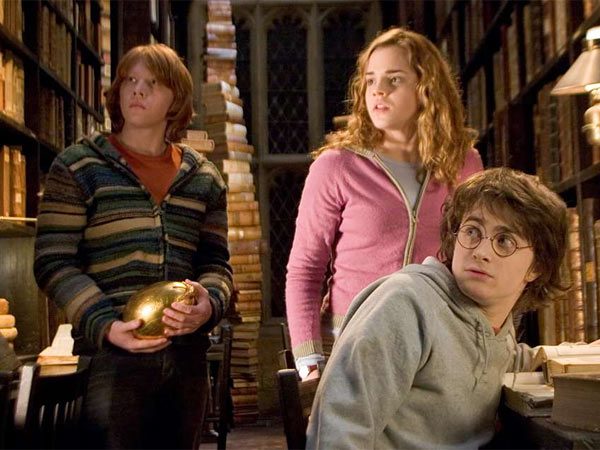 The Harry Potter series - starring (from left) Rupert Grint, Emma Watson, and Daniel Radcliffe.