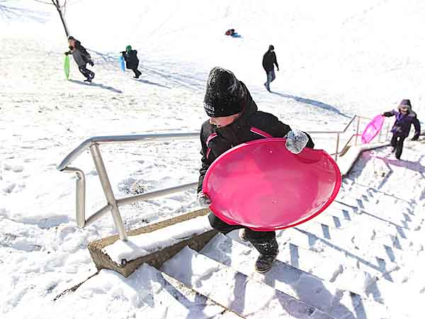 Instead of trying to walk back up the hill after sledding down Mackenzie Beamer, 8, takes the stairs back tot he top of the hill at Fort Washington Elementary School. Snow and Ice greeted residents of the Delaware Valley Saturday morning. How is the Philadelphia region´s transportation, especiall air and train, impacted by the storm  02/09/2013  ( MICHAEL BRYANT / Staff Photographer  )