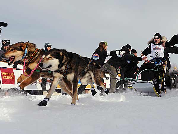 Dogs bolted out of the chute in Willow, Alaska, on Sunday to launch the 41st running of the Iditarod Trail Sled-Dog Race. (Bob Hallinen/AP)