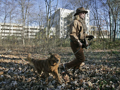 FILE: A woman and her dog walking in Burholme Park. The Fox Chase Cancer Center is pictured in the background. (Alejandro A. Alvarez / Staff Photographer)