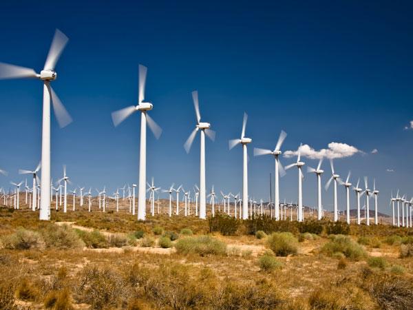 A wind farm. (istock photo)