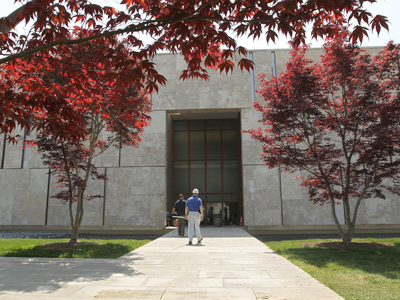 Japanese maples help frame the walkway up to the entrance of the Barnes Foundation, which has moved from Merion to its new and controversial location on the Benjamin Franklin Parkway. (Michael Bryant / Staff Photographer)