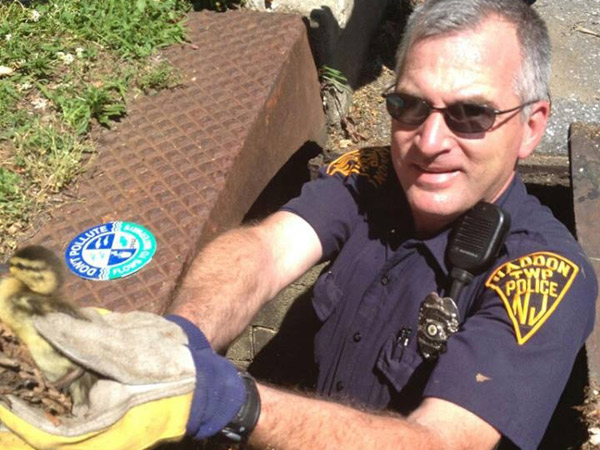 Haddon Township Police Officer Kirk Earney hands up one of 10 ducklings rescued from a storm drain at Cooper River Park.  (Photo: John Vernon/Westmont Fire Co.
