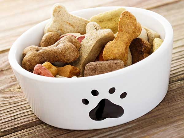 Pet Center, Inc., a Los Angeles-based pet-treat manufacturer, has issued a voluntary recall of specific lamb-based dog treats due to potential contamination with Salmonella. (iStock)