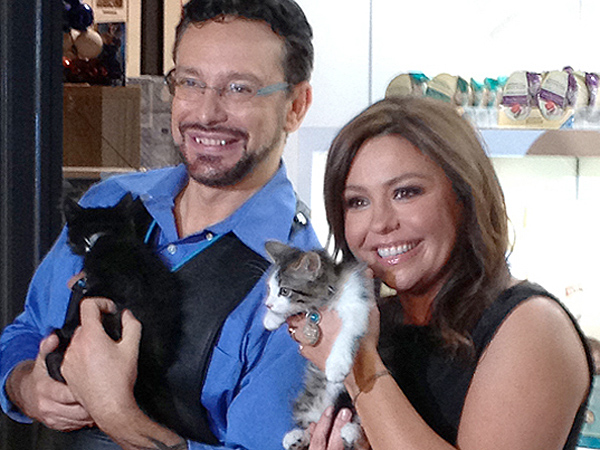 Though Rachel Ray doesn't have any felines in her house hold, her mother has rescued 15 cats.