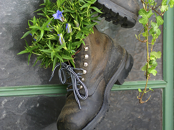 Turn an old shoe or two into a whimsical, trendy planter that might pay tribute to disco-era glitz or offer the contrast of an old army boot. (iStock)