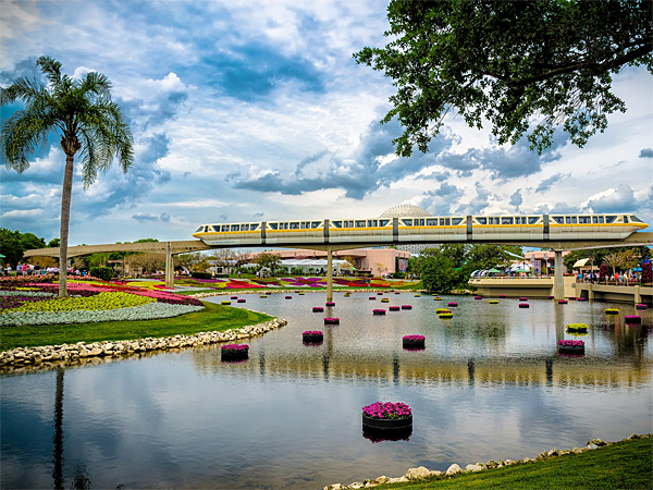 It may cost close to $100 dollars for a one-day ticket to one of the major theme parks around Orlando, but there are plenty of free things in the area for a family to do.
