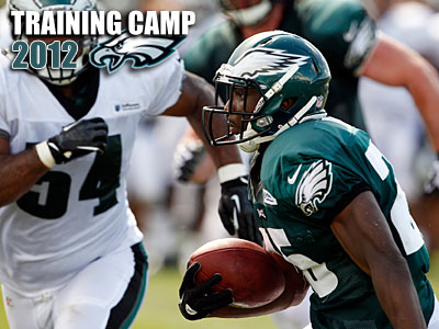 Last season, LeSean McCoy led the NFL in rushing touchdowns and total touchdowns. (Yong Kim/Staff Photographer)