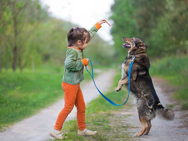 Children make great dog trainers. They have more time to spend with the family dog, and they love to play. (iStock)