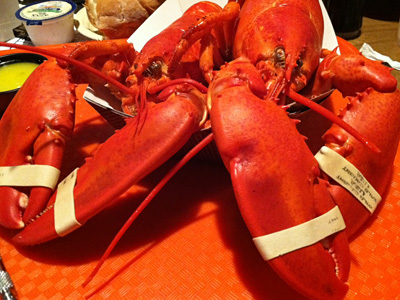 Back from Maine, Craig LaBan has lobster stories to tell.
