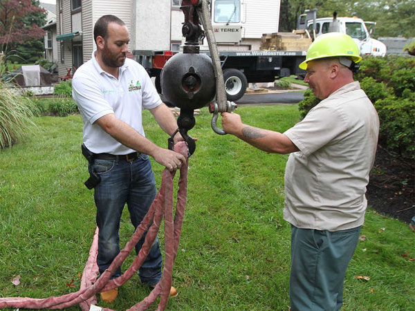 Josh Skolnick (left), founder of Monster Tree Service in Fort Washington, attaches cables that will wrap around the tree as it is being cut. (File photo: Michael Bryant / Staff Photographer)