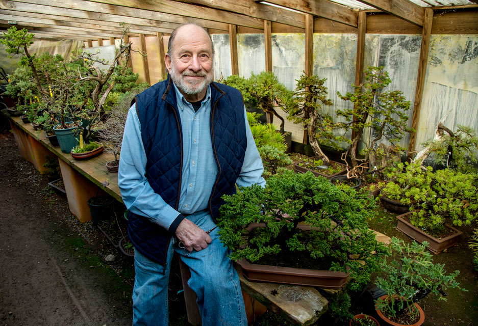 Bonsai master Chase Rosade, 82, sits in his New Hope studio surrounded by his and his students' creations March 8, 2017.  Rosade will be exhibiting the Japanese spruce bonsai next to him at the Philadelphia Flower Show.  He started the tree about 30 years ago as a cutting.   CLEM MURRAY / Staff Photographer