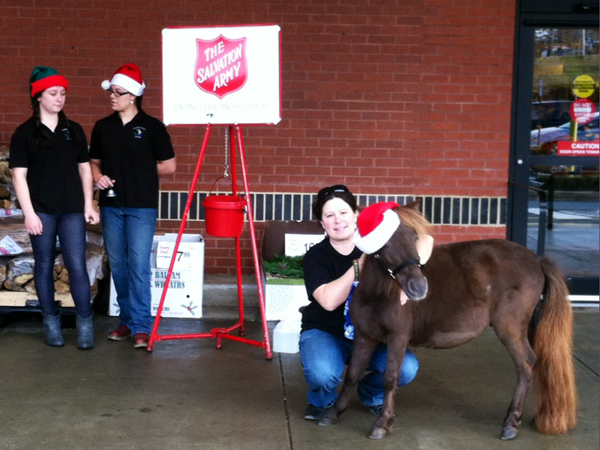 """Snickers"" in his new role as a bell-ringer at the Salvation Army kettle. He first started volunteering earlier this month and will make his third appearance Saturday. (Photo courtesy of Kelly Reiter)"