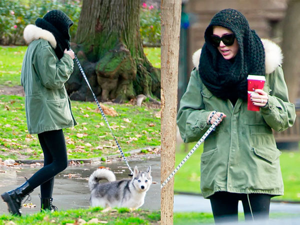 Miley Cyrus walks her dog around town.