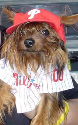 Jay-Jay wears his lucky Phillies jersey and hat for every game.