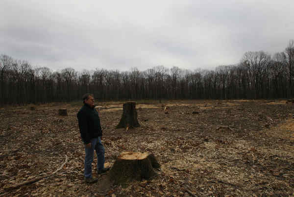 """A Pennsylvania State Parks and Forestry official at a clearing for Marcellus Shale gas drilling. """"We need to go real slow at this,"""" said one lawmaker, """"and not look at the parks as a cash cow."""""""