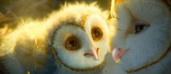 Eglantine and Soren, two of the animated owls from the 3-D combat epic. The swooping warfare is like airborne ballet.