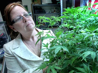 Lanette Davies, co-owner of CannaCare, a medical marijuana shop, looks at some young marijuana plants at a facility in Sacramento, Calif., in this Sept. 21, 2010, photo. She believes that Proposition 19´s provision allowing local governments to regulate the sale of marijuana will result in less access to marijuana for recreational and medical use. (AP Photo/Rich Pedroncelli, File)