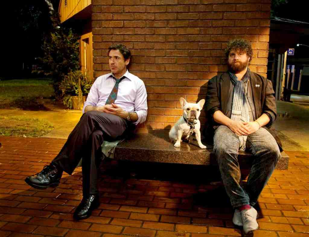 Robert Downey Jr. (left) must cross the country in time for his son´s birth, and Zach Galifianakis is the childlike companion he is forced to endure.