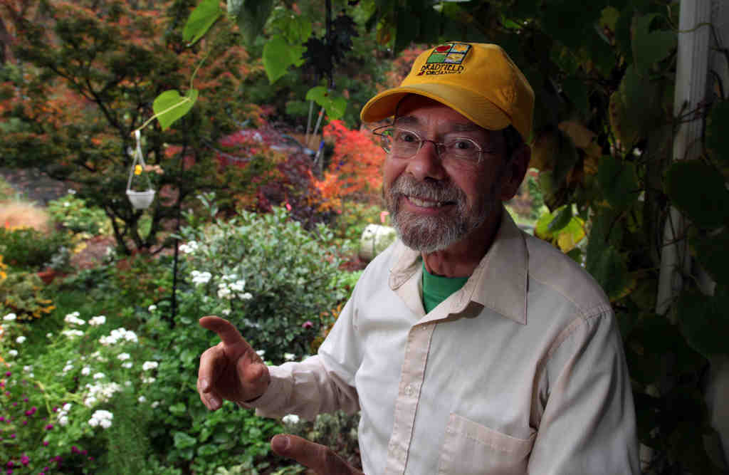 Rick Ray in his garden in Marple Township, where ground covers galore grow on 2 1/2 acres.