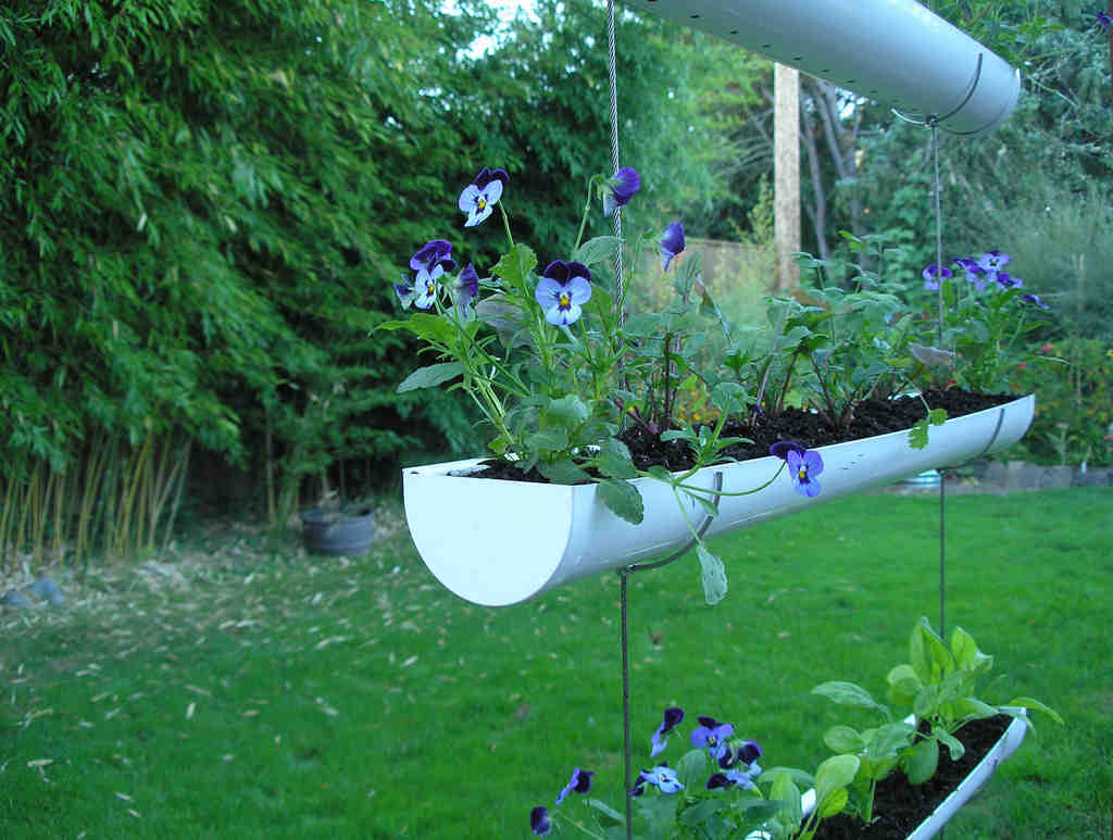 """""""Gutter gardens"""" are an innovative form of vertical planting. Mounted on a wall or hanging from an arbor, they´re best made of a metal that doesn´t rust, such as copper, zinc, or stainless steel ."""