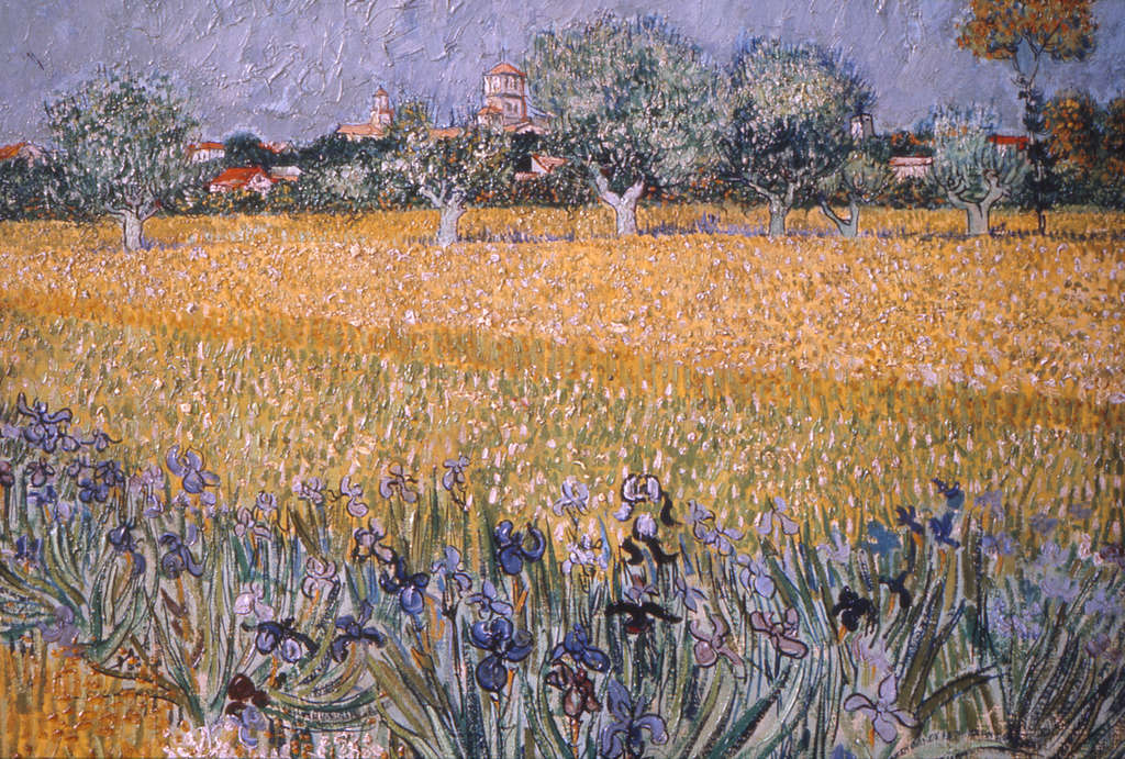"""Field With Flowers Near Arles"" (1888). There are 46 paintings in the Art Museum show, along with 30 works on paper by other artists and photographers, illuminating van Gogh´s possible sources."