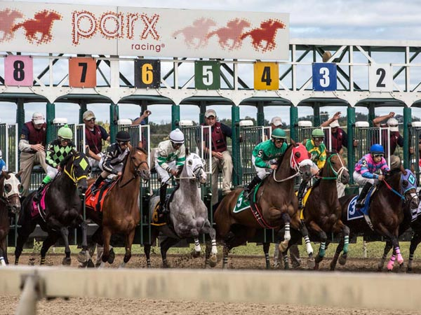 Horses and jockeys come out of the gate during the first race of the day last Saturday at Parx in Bensalem, Bucks County. (Colin Kerrigan / Philly.com)