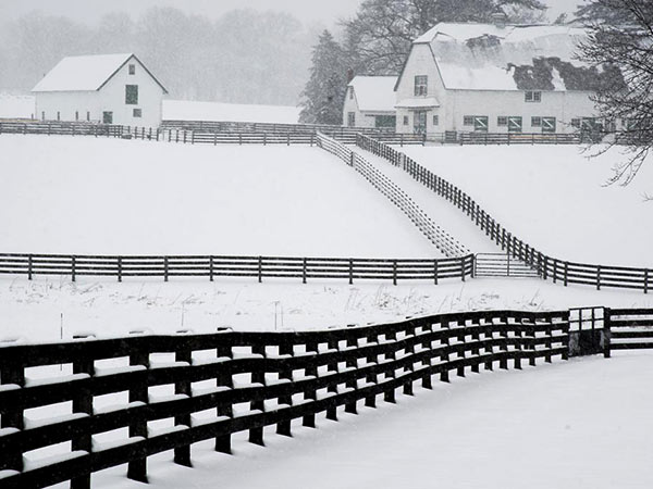 The fences of Crebilly Farm in West Chester create a zig-zag pattern in the snow-covered fields during Monday´s storm. Yet more snow is on the way this week. (CLEM MURRAY / Staff Photographer)