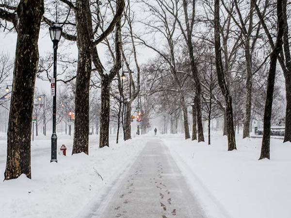 Snow covers the walkway alongside the Benjamin Franklin Parkway on Feb. 13, 2014. (Colin Kerrigan / Philly.com)