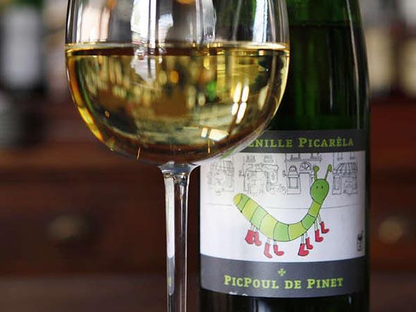 La Chenille Picarela, PicPoul De Pinet, 2011,  photographed at The Good King. (Michael S. Wirtz/Staff Photographer)