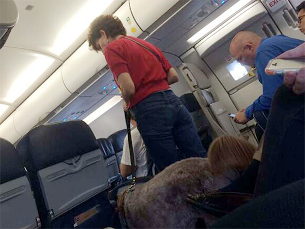 A Philadelphia-bound US Airways flight, already two-hours delayed, was forced to make an emergency landing in Missouri after a passenger's service dog defecated in the aisle.