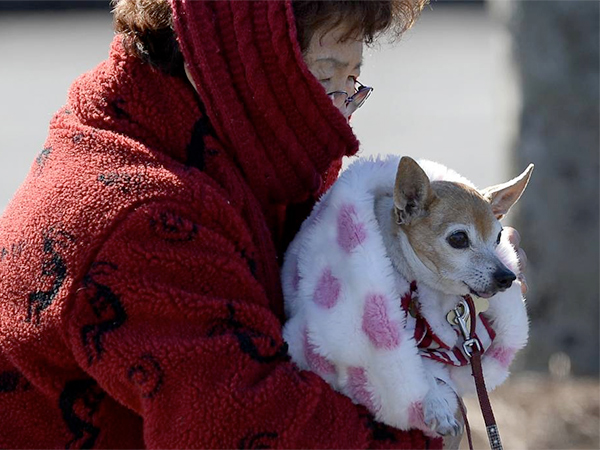 Doc Cheng bundles up with her chihuahua Happy as she braves  a cold Arctic blast that brought temperatures down to 6 degrees above zero last week. After temperatures reach the mid-40s on Monday, they are due to fall below freezing Monday night and then not get out of the 20s the rest of the workweek. (AP Photo/David Tulis)