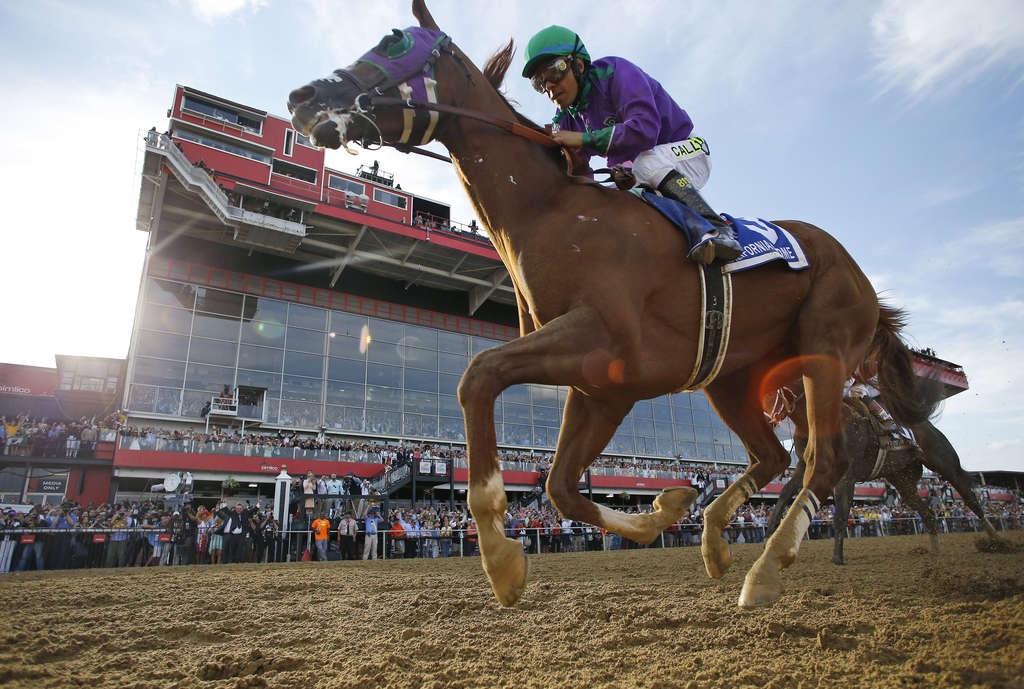 A horse is a horse, of course, of course . . . unless that horse is California Chrome. And correctly predicting that said horse would not win the Belmont Stakes was completely beside the point. MATT SLOCUM / Associated Press
