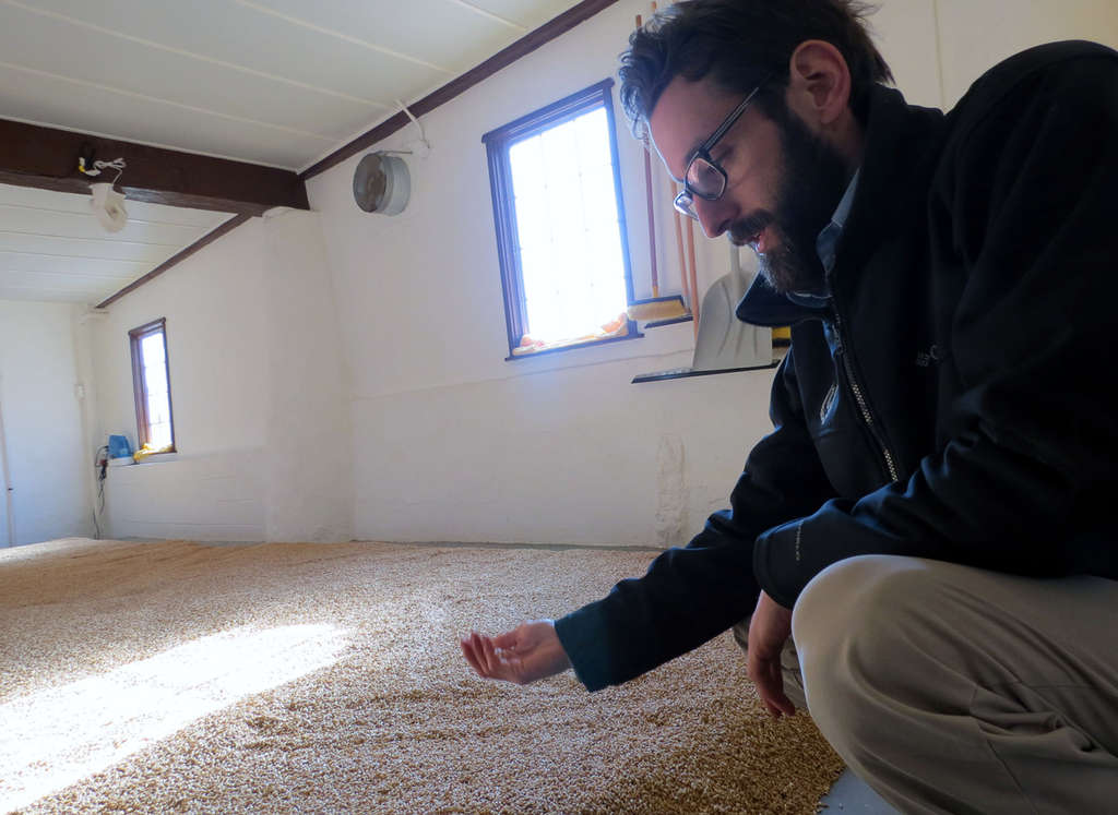 Deer Creek Malthouse´s Mark Brault, with a hand- and floorful of barley that´s on its way to be turned into beer.