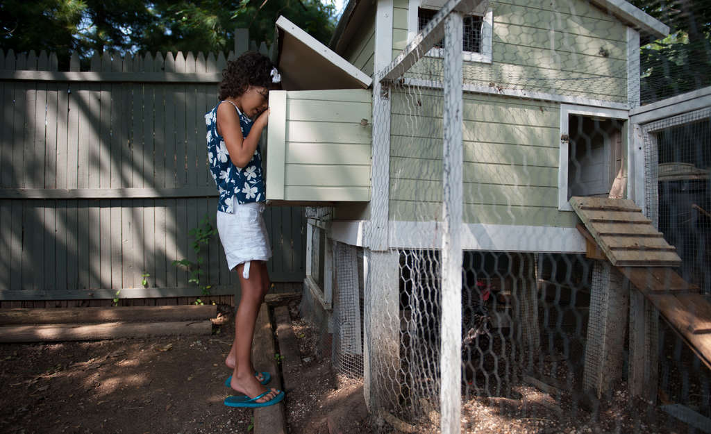 Vivia Welcome, 8, opens the henhouse in her backyard in Audubon, where her family has kept a coop for the last year.