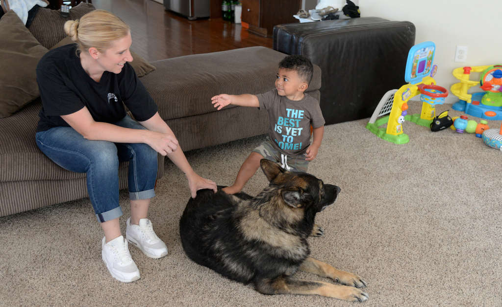Glassboro Police Cpl. Mindy Knight, wife of Sgt. Ryan Knight, and their son Ryan Jr. at home with Bento, Ryan Knight´s recently retired canine partner on the Glassboro force.