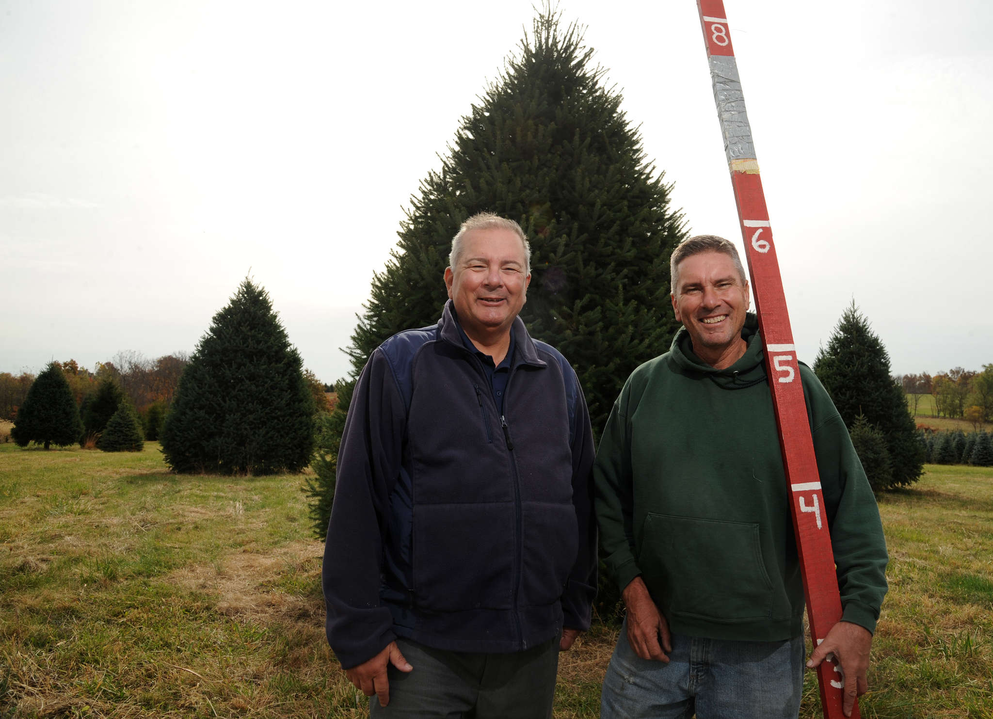 Jay (left) and Glenn Bustard run Bustard´s Christmas Trees in Lansdale. The brothers won a national contest in July, and are set to spruce up the White House´s Blue Room. CLEM MURRAY / Staff Photographer