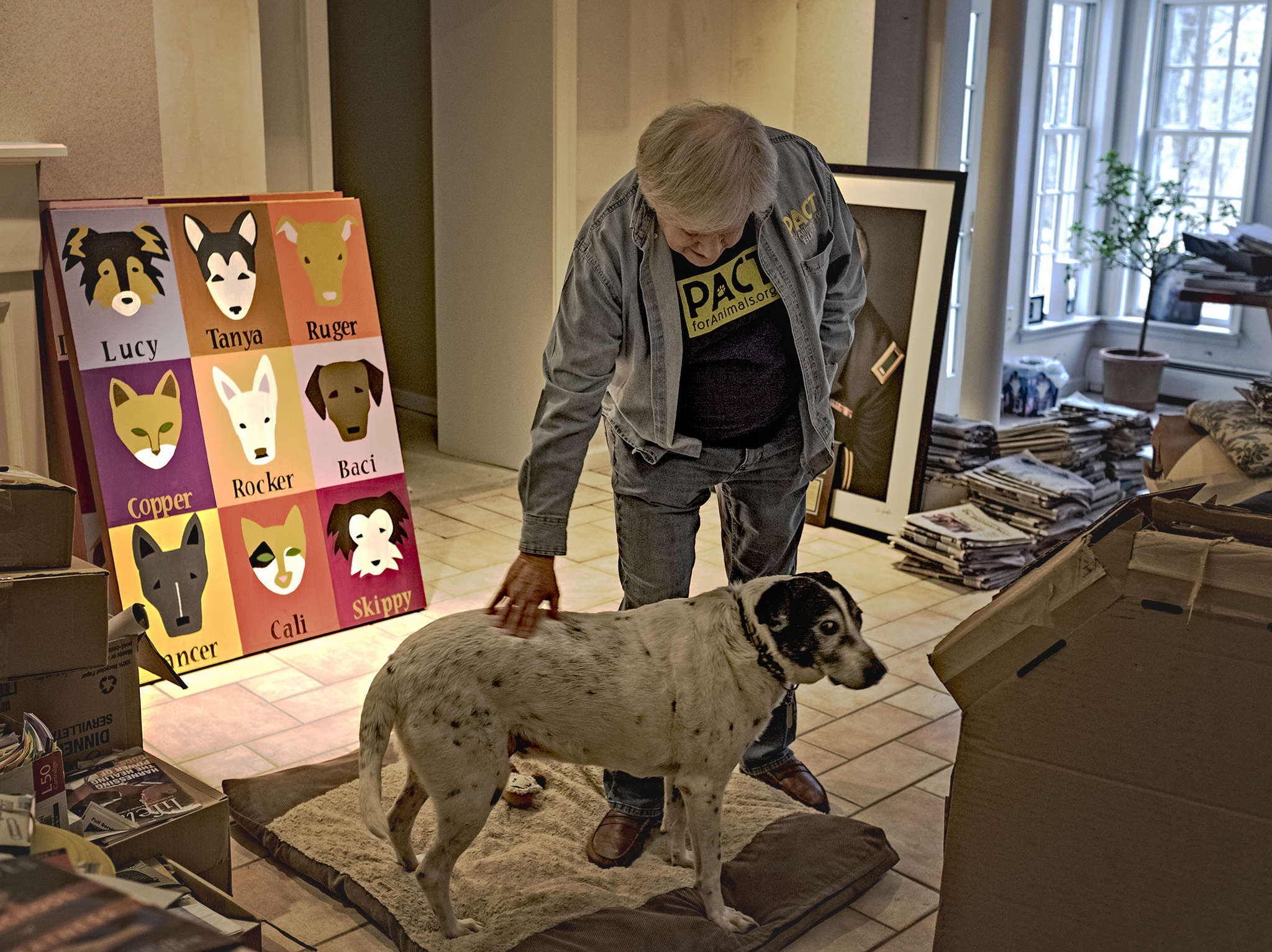 Buzz Miller founded PACT for Animals, a nonprofit that finds foster homes for pets of service members and more. His next project will pair animals with retirement-community residents.