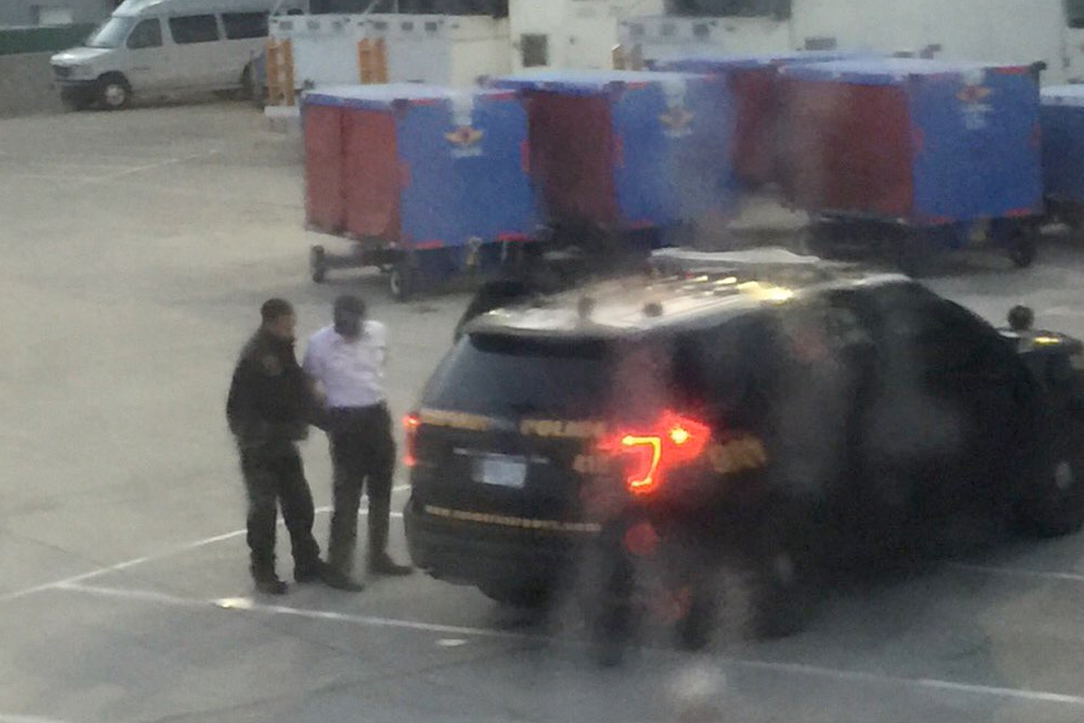 American Airlines Pilot Arrested After Allegedly Showing