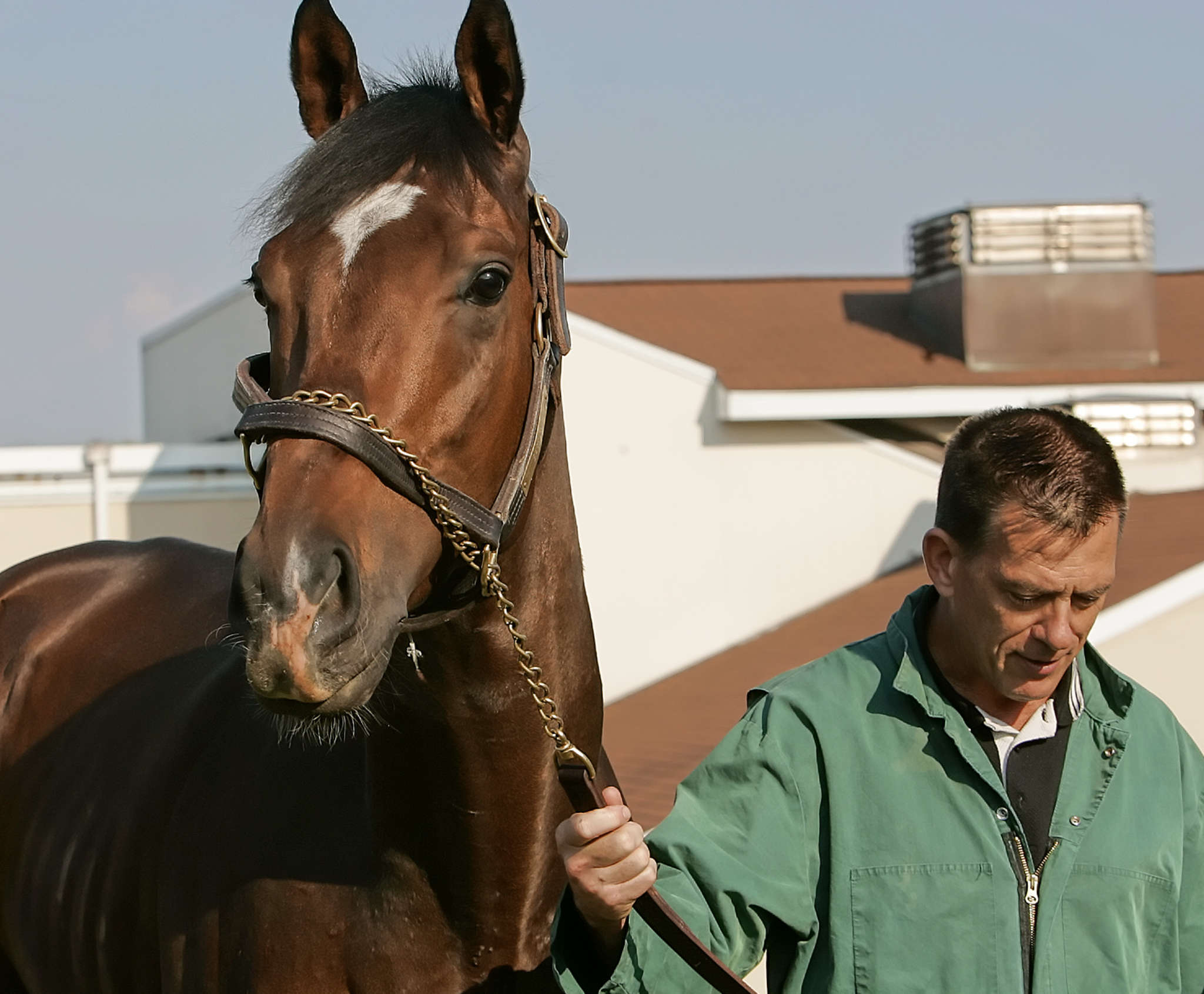 Dr. Dean Richardson walks with Barbaro in Septemberof 2006. Associated Press