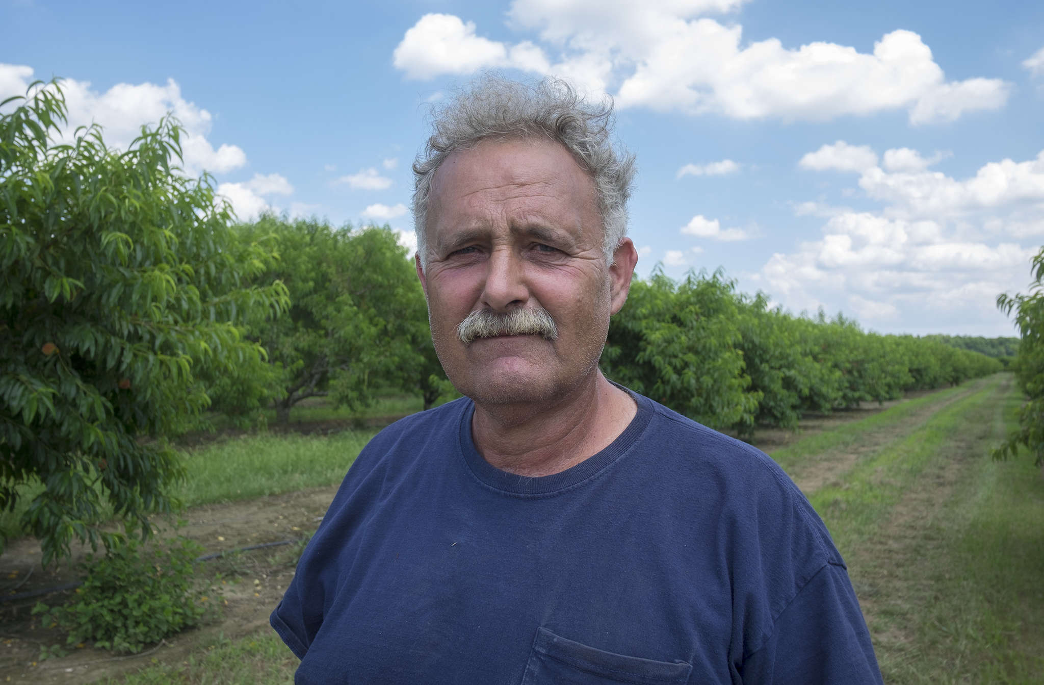"Santo John Maccherone, chairman of New Jersey Peach Promotion Council, on his farm in Mannington Twp. ""There are guys who got hurt really bad, and have next to nothing. Others may have 90 percent of what they normally have."""