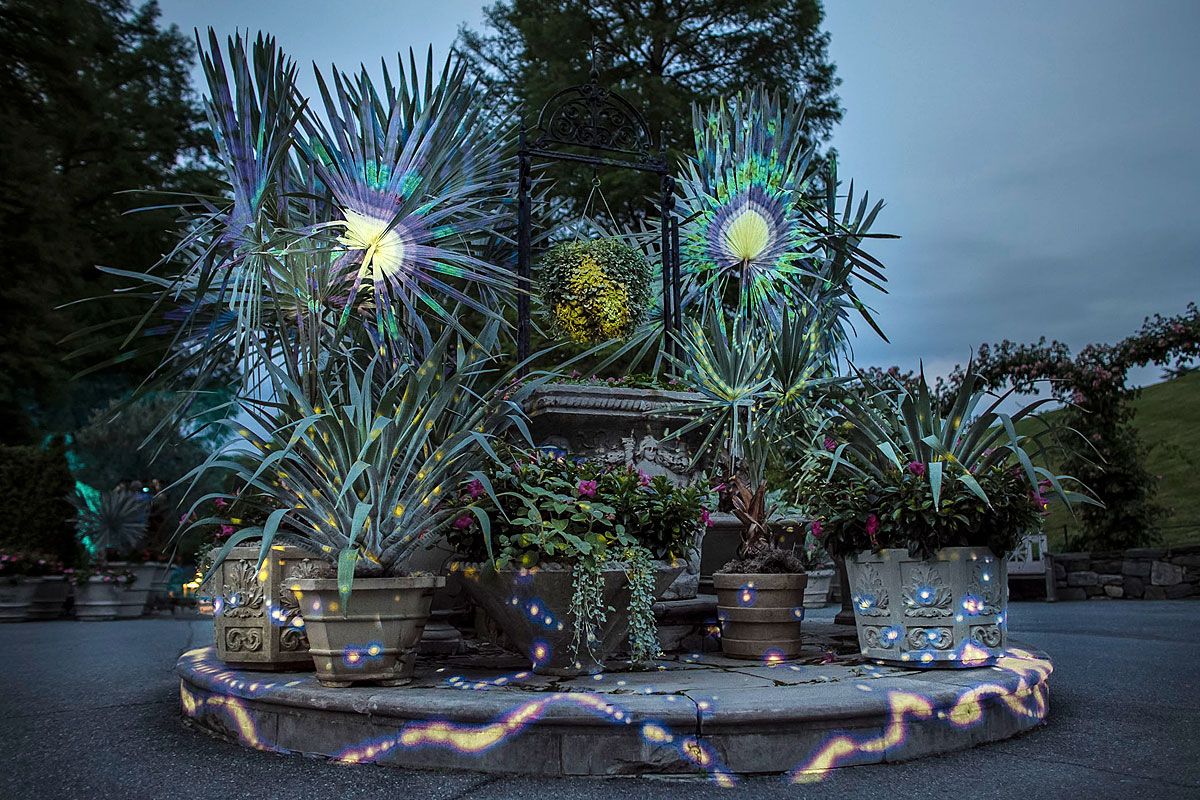 """Nightscape,"" a two-hour Longwood Gardens experience."