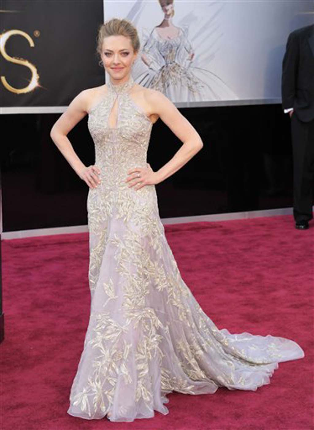 2013 Oscars red carpet: Who wore what to the 85th Academy Awards