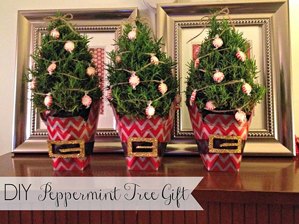 DIY Peppermint Tree
