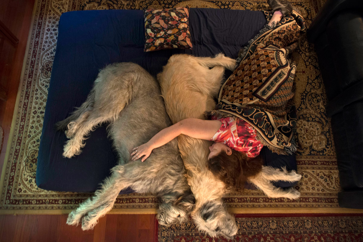 Denise Harris takes an afternoon nap with her Irish Wolfhounds, Farrhear (left) and Carrik (right), in Columbia, Md.