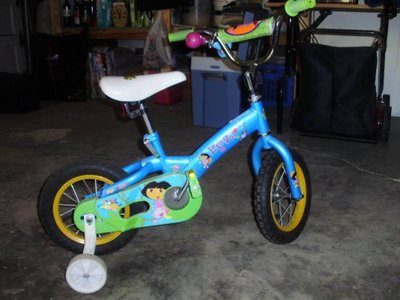 Here´s the Dora the Explorer bike we hope Eskin rides to California.