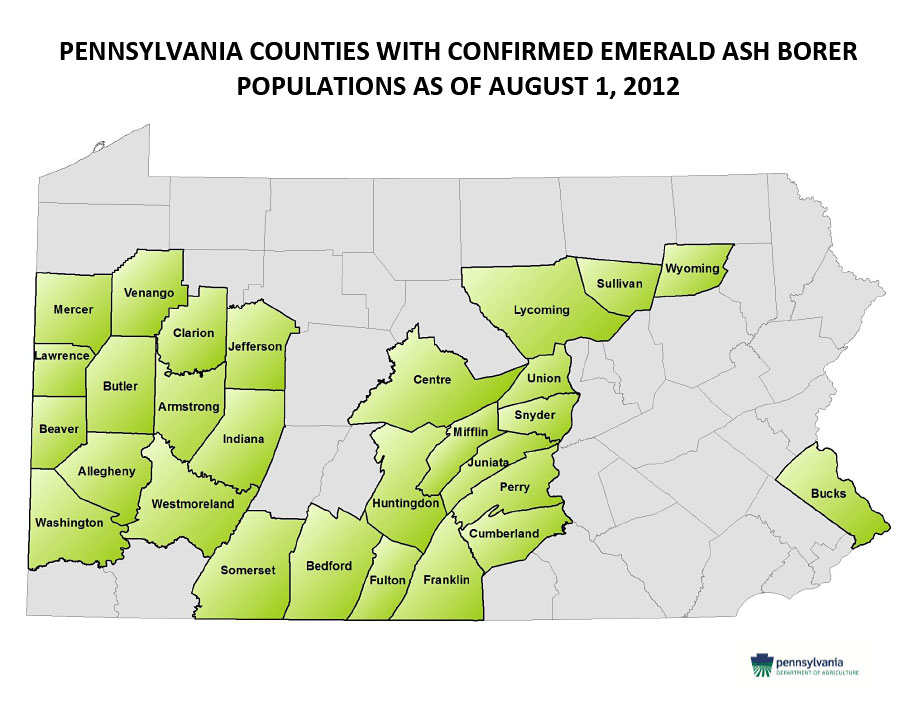 Voracious Emerald Ash Borer Now In PA Counties - Emerald ash borer map