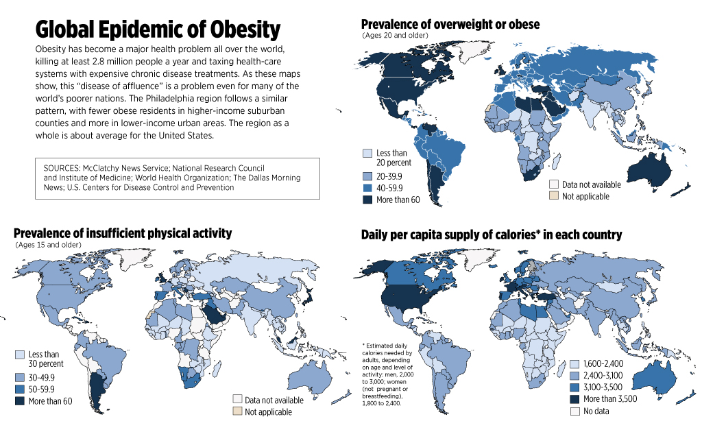 modern global epidemic of obesity Obesity epidemic is not caused by genes or lifestyle to our modern day sedentary lifestyle where because the obesity epidemic seems to hit.
