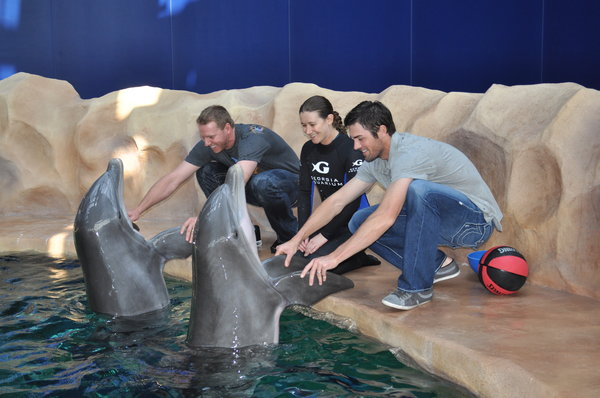 Roy Halladay plays with Shaka while Cole Hamels holds Lily at the Georgia Aquarium on a tour from Havertown native Lisa Mignogna.
